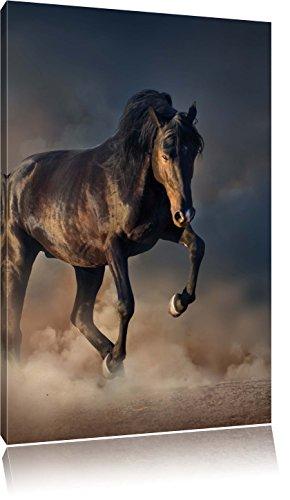 Schwarzes Pferd, Format: 80x60 auf Leinwand, XXL riesige Bilder fertig gerahmt mit Keilrahmen, Kunstdruck auf Wandbild mit Rahmen, günstiger als Gemälde oder Ölbild, kein...
