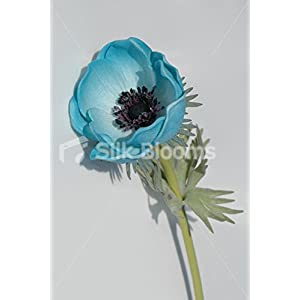 Single Artificial Fresh Touch Turquoise Anemone, Silk Poppy