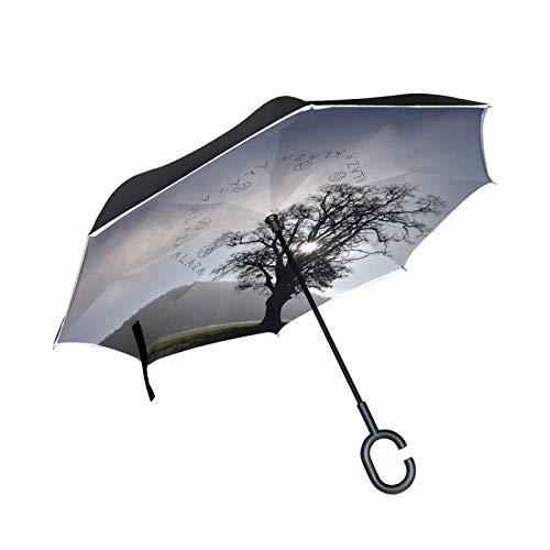 Paraguas invertido con pintura acrílica, con mango en forma de C, paraguas plegable inverso, doble capa, resistente al viento, anti UV, para lluvia y uso al aire libre