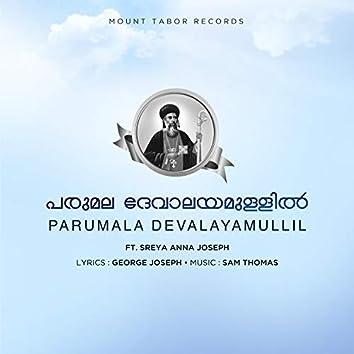 Parumala Devalayam (feat. Sreya Anna Joseph)