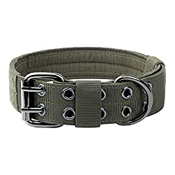 One Tigris Military Adjustable Collar