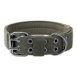 One Tigris Military Adjustable Collar