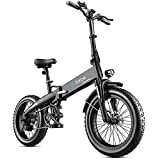Folding Ebike for Adults 20' Fat Tire Bike 20 Mph Brushless Motor SHIMAMO 7 Speed Removable Lithium Battery Mountain Ebike