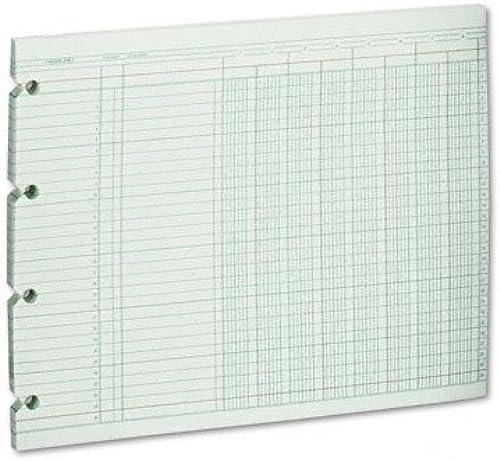 Wilson Jones Grün kolonnen n liniert Ledger Papier, 8 aßten und 30 ilen pro Seite, 23,5 30,2 , 100 att pro Pack (WG10–8  von Acco Marken