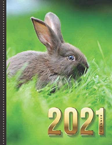 2021 Planner: Bunny Rabbit in Green Grass - Nature Animal Photo / Daily Weekly Monthly / Dated 8.5x11 Life Organizer Notebook / 12 Month Calendar - ... Flexible Cover / Christmas or New Years Gift