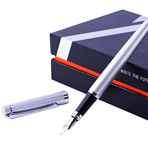 Pennen Student Boys Vrouwen Gift Boxes Beginners Practice Kalligrafie Ink Pen Set Adult Schrijven Office Gift Pen (Color : Silver gray, Size : 0.5mm)