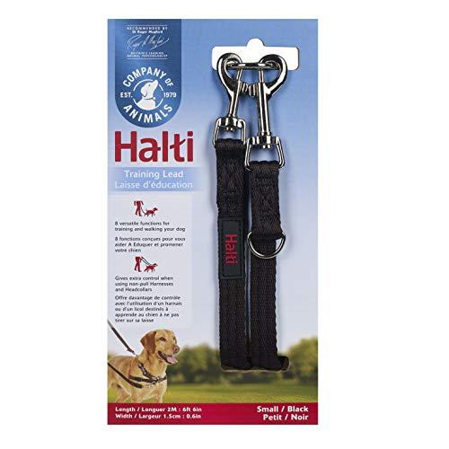 Halti 14120A - Correa de entrenamiento para perros de doble extremo para collar y arnés sin tirones, negro, talla S