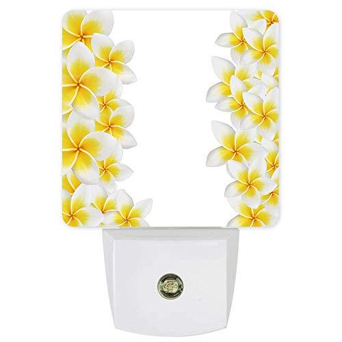 Frangipani Plug-In Led Night Light-Zen Meditación Lotus Cohesion Yoga, Smart Dusk To Dawn Sensor Night Lamp