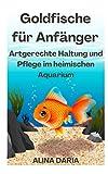 Goldfische für Anfänger – Artgerechte Haltung und Pflege im heimischen Aquarium
