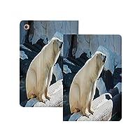 iPad Pro 12.9 ケース 2020 動物園、ホッキョクグマ野生動物公園岩水寒冷気候観光名所画像装飾的、ライトブルーブラッククリーム 動物園 軽量 TPU レザー スマート 耐衝撃 傷防止 クリア ハード スタンド オートスリープ ウェイクアップ 機能 ライトブルーブラッククリーム