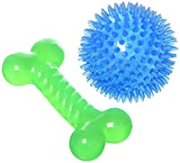 Kole Imports Spiky Ball & Bone Dog Toy Set