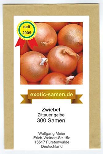 Zwiebel - Zittauer Gelbe (300 Samen)