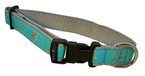 Collar para Perro Preston Aqua Starfish con Estrella de mar de Color Natural en Cinta Azul Claro Verde con Correa de Nailon Gris Plateado