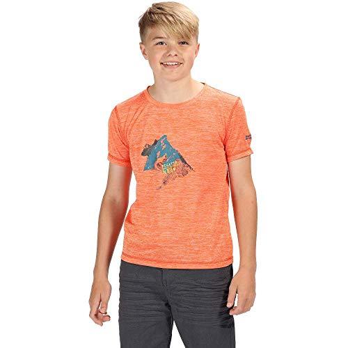 Regatta Alvarado IV Camiseta de Secado rápido Unisex para niños, Unisex niños, Camiseta, RKT096, Naranja Brillante, Talla 5-6