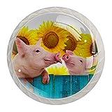 Boutons de tiroir tire poignée matériel de placard commode en verre tiroirs armoire de porte pour bureau à domicile cuisine armoire Animal drôle cochon tournesol clôture
