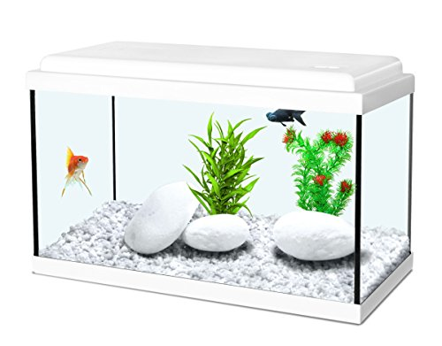 Aquarium 18L Nanolife Kidz 40 Blanc