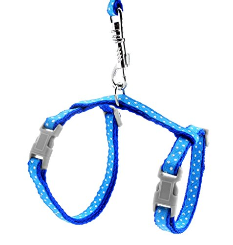 SMALLLEE_Lucky_Store Arnés Correa y Collar Ajustable de Lunares para Gato Correa de Paseo para Perro Pequeño Gatos y Conejos Azul