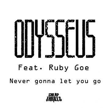 Never Gonna Let You Go (feat. Ruby Goe)
