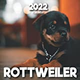 Rottweiler: A Monthly and Weekly Calendar 2022 - 12 months - With Rottweiler Pictures,to Write in Appointment, Birthday, Events Cute Gift Ideas For Men, Women, Girls, Boys in Bulk