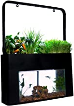 hydroponic tank