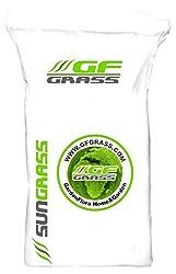 Rasensamen GF Sun Grass Pro 10kg dürreresistenter Rasen Grassamen Rasensaat Saatgut Grassaat