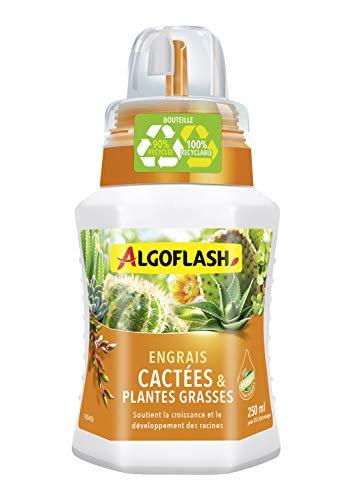 ALGOFLASH Engrais Cactées et Plantes Grasses, Bouchon Doseur Inclus, 250 ml, ALITC250