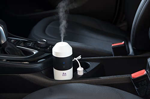 Arospa Electric Car/Indoor Essential Oil Diffuser/Humidifier/Purifier With Car 12V and wall...