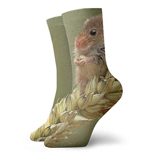 Socks Calcetines Maus Auf Weizen Calcetines cortos unisex para adultos que absorben la humedad atléticos para correr, fitness, viajes, trabajo