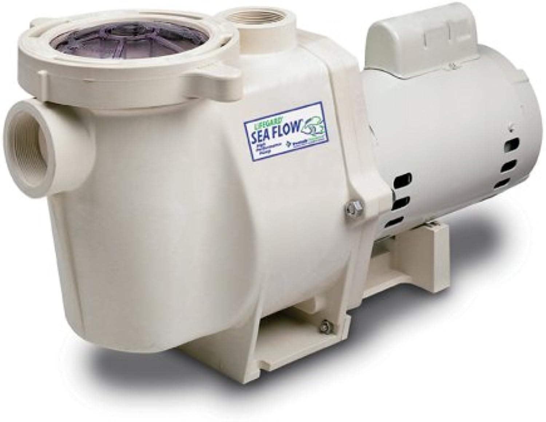 Sea Flow 1 HP Pump