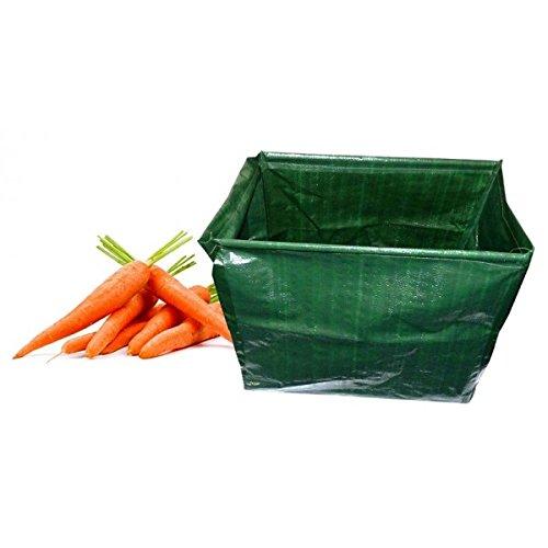 Mundus 33082 2 Kits à Planter Haut Légume Vert 45 x 27 x 40 cm