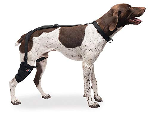 Caldera Pet Therapy Wrap