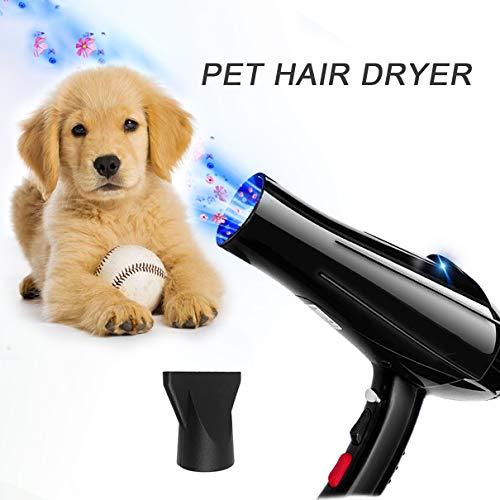 MOMAMO Hundefön, Heimtierbedarf, Hundetrockner Pet Dryer Pet Trockner Tierfön Hundepflege Haartrockner Haustier Pflege Pet Blower Low Noise Einstellbare Wärme Tierföhn,blauem Licht,Duft