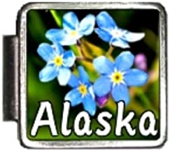 Clearly Charming Alaska State Flower Forget-Me-Not Photo Italian Charm Bracelet Link