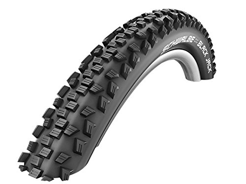 2x Schwalbe Black Jack Fahrrad Reifen ETRTO 57-559 (26 x 2.25 Zoll)