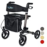 Health Line Massage Products Compact Rollator for Seniors, Euro Style Folding Walker with Seat and Backrest, 8' Wheels, 3 Colors Available (Titanium)