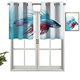 Cenefa de cortina para interiores y hogares, diseño de peces de la lucha siameses Betta nadando en acuario, animales marinos agresivos, juego de 2, 137 x 60 cm para baño y cafetería.