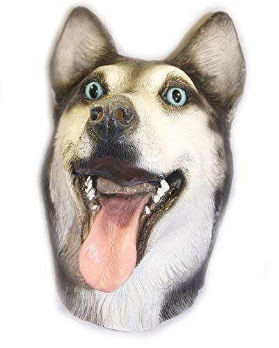 The Rubber Plantation TM 619219293457 Masque de Sibérie en latex Malamute Loup Chien Canin Animal Halloween Huskie Accessoire de déguisement Unisexe Adulte Taille unique