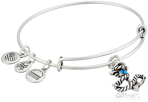 Alex and Ani Anchor III EWB, Rafaelian Silver Bangle Bracelet
