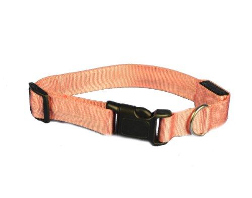 Aviditi BC704-S LED-Hundehalsband, Rosa mit rosa LED-Lichtern, l, Rosa mit rosa LED-Lichtern