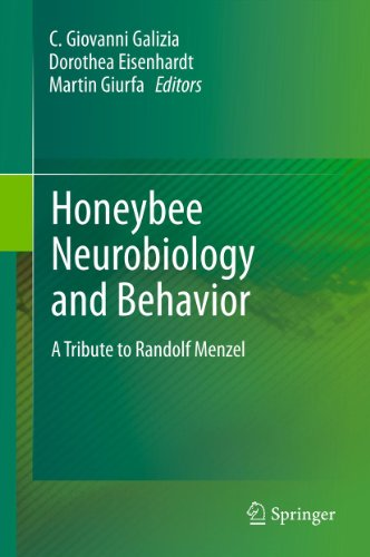 Honeybee Neurobiology and Behavior: A Tribute to Randolf Menzel