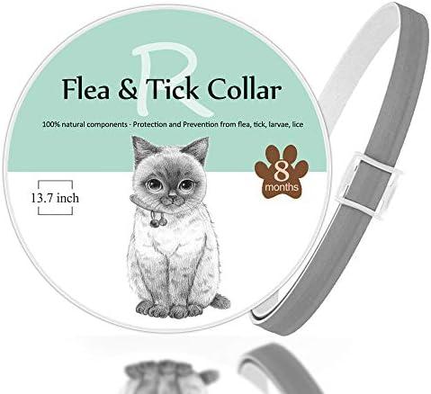 Rmolitty Collar Antiparasitario Pulgas para Gatos, 8 Meses de Duración de Protección 35cm (1pcs)