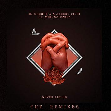 Never Let Go (The Remixes 2)