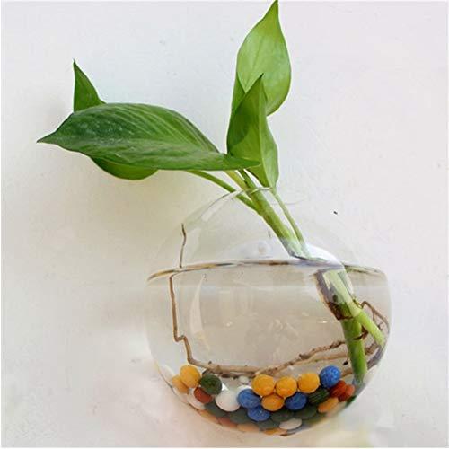 Ybqy Tuin benodigdheden Thuis Hangende Glas Bal Vaas Bloem Planter Potten Terrarium Container Thuis Tuin Decoratie