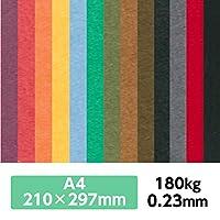 厚紙カラーペーパー『ケンラン(特色) 180Kg(=0.23mm)』 A4(210×297mm) 20枚【印刷・工作・名刺・カード・紙飛行機・ペーパークラフト】 くろ