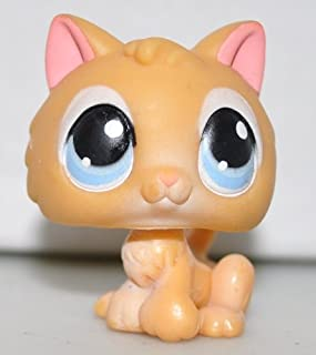 Kitten #47 (Orange, Blue Eyes) Littlest Pet Shop (Retired) Collector Toy - LPS Collectible Replacement Single Figure - Loose (OOP Out of Package & Print)