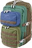 normani Kabinenrucksack geeignet als Handgepäck im Flugzeug, großer Reiserucksack mit 45 Litern Fassungsvermögen Farbe Thayer