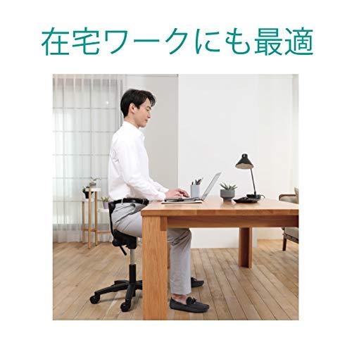 アーユル・チェアーキャスタータイプオクトパスブラック【骨盤を立て坐骨で座る腰と姿勢のサポート椅子デスクワーク集中できる学習環境特許取得】