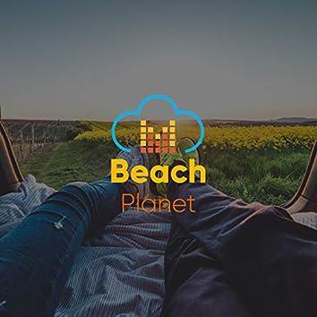 # 1 Album: Beach Planet