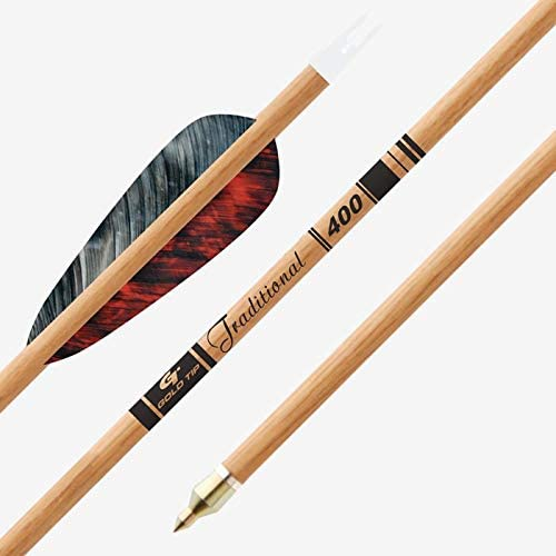 GOLD TIP Arrow Excellence Traditional .246 Feathers Max 61% OFF EA 4