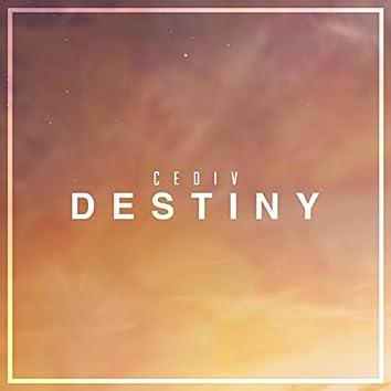 Destiny (feat. Nathan Brumley)